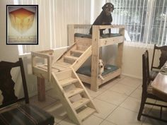 Doggy bunkbeds made out of pallets...Too cute.
