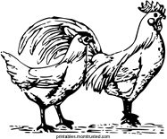 free images to sew hens or roosters | Hen and Rooster Free Coloring Page - Preschool Activities and ...