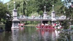 Swan Boats in Boston, MA