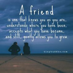 """Tiny Buddha on Twitter: """"A friend is one that knows you as you are, understands where you have been, accepts what you have become, and..."""