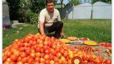 Magický balzam pre rast paradajok od záhradníka Vladimíra Zelenku! Vegetable Garden, Natural, Gardening Tips, Garden Landscaping, Garden Design, Health Fitness, Pumpkin, Landscape, Vegetables