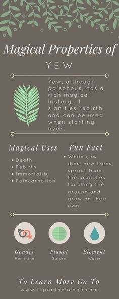 herbalism HerbalismYou can find Herbalism witchcraft and more on our website Green Witchcraft, Wiccan Spells, Witchcraft Herbs, Wiccan Witch, Candle Spells, Herbal Magic, Magic Herbs, Plant Magic, Witch Herbs