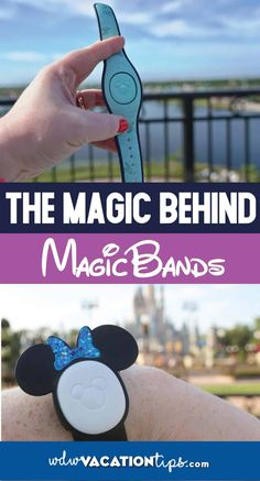MagicBands are a secure all-in-one device that allows visitors to travel lighter while on vacation. Disney World Tickets, Disney Souvenirs, Disney World Resorts, Disney Vacations, Walt Disney World, Disney Travel, Disney World Tips And Tricks, Disney Tips, Disney Parks