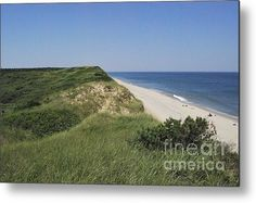 Cape Cod National Seashore In All Its Glory Metal Print By Matt Wade