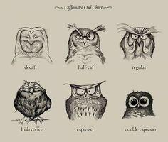 owl drawings - Buscar con Google