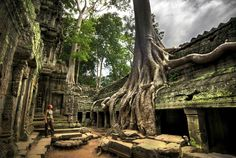 Ta Prohm, Angkor, Cambodge - http://www.photomonde.fr/ta-prohm-angkor-cambodge/