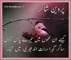 ساگر گہرا , رات اندھیری میں تنہا !!!  اے.ایچ Parveen Shakir, Urdu Quotes, Urdu Poetry, Poems, I Am Awesome, Wisdom, Ali, Couple, Deep