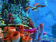 New Painting Sea Animals Coral Reefs 33 Ideas Underwater Painting, Underwater Sea, Mermaid Cave, Ocean Creatures, Sea And Ocean, Sea World, Underwater Photography, Ocean Life, Aquariums