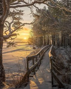 Winter sunset nature photography - A sunset is never the exact same. Instead of relying upon the camera's auto mode it is an ideal time to switch you.