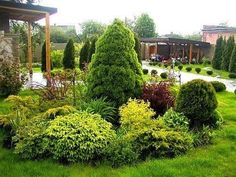 – Gardening Tips Privacy Landscaping, Outdoor Landscaping, Backyard Patio, Container Gardening, Gardening Tips, Landscape Design, Garden Design, Retractable Pergola, Roof Styles