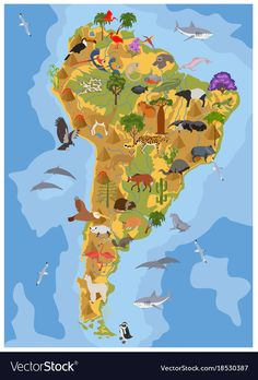 South America flora and fauna map, flat elements. Animals, birds and sea life big set. Build your geography infographics collection. South America Animals, South America Map, America Memes, America Quotes, Arte Latina, Latin American Studies, American Animals, World Map Art, Country Maps