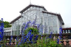 KUUNSÄTEESSÄ: Helsingin talvipuutarha Glass House, Capital City, Helsinki, Avon, Buildings, Beautiful Places, Louvre, Travel, Ideas