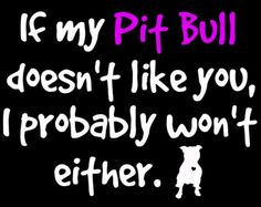 If My Pit Bull Doesn't Like You... Get the t-shirt! http://www.thelazypitbull.com/2014/05/pit-bull-shirt/
