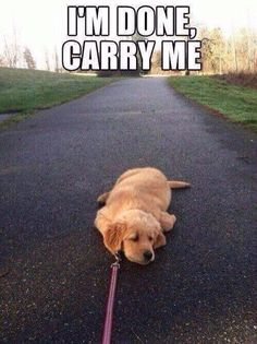 Me at the end of my long run fitness