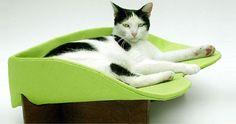 pet-cat-bed-kittysville