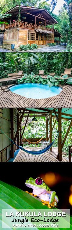 Visit La Kukula Ecolodge in Costa Rica's popular Puerto Viejo. Surrounded by lush jungle and walking distance to the beach this lodge is run by a friendly and helpful couple who own it. It's common to see sloths in the trees, and red eyed treefrogs come out every night just outside the doors. The lodge is amazing experience!