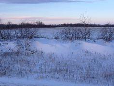Snow Dunes!