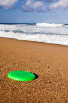 Love To Play Beach Frisbee Spaweeksummer Pink Summer Fun Time