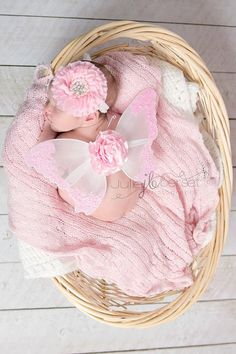 Infant Butterfly Fairy Wings and Headband White and Pink
