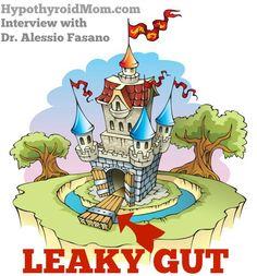 Leaky Gut / Hypothyroidism