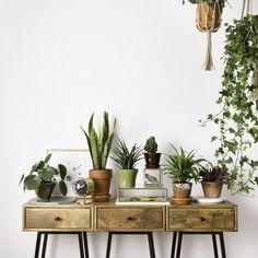Mais um cantinho cheio de verde para inspirar você a ter suas próprias plantinhas em casa.: Pinterest #revistacasaclaudia #decor #decoration #decoração #home #house #casa #homedecor