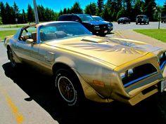 1978 Pontiac Trans Am Firebird