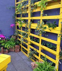 Em uma pequena área externa, pequenas varandas, dentro de casa, perto das janelas, enfim, em qualquer lugar em que você consiga um pouquinho de sol ou ao menos luminosidade e você pode ter verde sim! Adapte estas 15 ideias ao seu espaço!