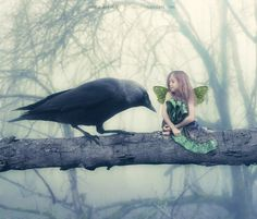 ≍ Nature's Fairy Nymphs ≍ magical elves, sprites, pixies and winged woodland faeries - Magical Creatures, Fantasy Creatures, Beautiful Creatures, Fairytale Creatures, Baby Fairy, Love Fairy, Unicorn And Fairies, Dreamy Photography, Winter Fairy