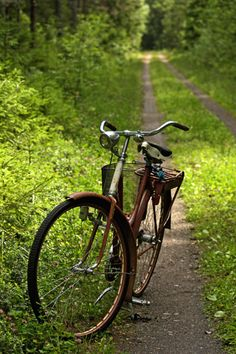 Country road and a bike.