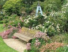 Bildergebnis für pink roses garden