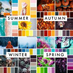 Which season is your favorite for color inspiration? (These are all from The Color Catalog - get it on my website! Colour Pallette, Colour Schemes, Color Trends, Color Combos, Colour Combinations Fashion, Color Combinations For Clothes, Wardrobe Color Guide, Color Palette Challenge, Color Pairing