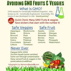 GMO free foods - as a reminder!