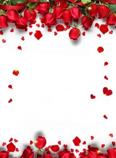 Romantic chinese valentines day valentines day red rose petals background design background,tanabata background,valentines day More than 3 million PNG and graphics resource at Pngtree. Find the best inspiration you need for your project.