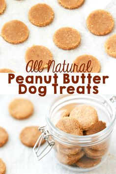 Our dogs are part of our family so I like making them healthy, all natural treats. These Peanut Butter Dog Treats are incredibly easy to make and my dogs absolutely love them. treats How to Make All Natural Peanut Butter Dog Treats Dog Cookie Recipes, Easy Dog Treat Recipes, Homemade Dog Cookies, Dog Biscuit Recipes, Homemade Dog Food, Dog Food Recipes, Peanut Butter Dog Cookies Recipe, Easy Treats To Make, Peanutbutter Dog Treat Recipe
