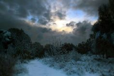 The Winter influenced seasons set the stage for bold, crisp color: Dark Autumn Dark Winter Bright Winter Bright Spring The Dark sea. Dark Autumn, Dark Winter, Winter Sunset, Grey Skies, Bright Spring, Color Studies, Winter Beauty, Yule, Sky
