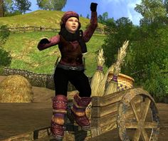 Cosmetic Lotro - The Hay Cart