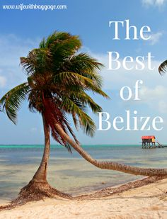 #Travel #Guide for #Belize | www.wifewithbaggage.com