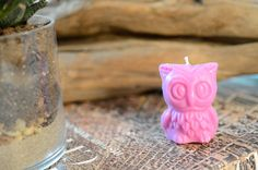 SMALL OWL Vegan Soy Candle- pick a color