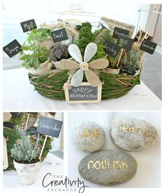 Mother's Day gift idea.  DIY moss basket filled with herbs, painted pots and garden rocks.  Easy gift idea.
