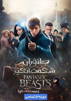 دانلود دوبله فارسی فیلم جانواران شگفت انگیز و زیستگاه آنها Fantastic Beasts and Where to Find Them 2..    دانلود دوبله فارسی فیلم Fantastic Beasts and Where to Find Them 2016  http://iranfilms.download/%d8%af%d8%a7%d9%86%d9%84%d9%88%d8%af-%d8%af%d9%88%d8%a8%d9%84%d9%87-%d9%81%d8%a7%d8%b1%d8%b3%db%8c-%d9%81%db%8c%d9%84%d9%85-fantastic-beasts-and-where-to-find-them-2016/