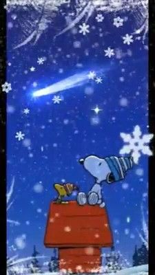 Pin by Anke Arndt on Snoopy [Video] Snoopy Love, Charlie Brown Und Snoopy, Snoopy And Woodstock, Gifs Snoopy, Snoopy Videos, Snoopy Quotes, Peanuts Christmas, Charlie Brown Christmas, Good Night Sleep Tight