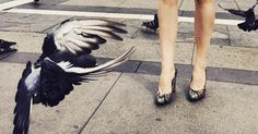 City and the Shoes | Walking down the streets.. #Zurbano #CityandtheShoes #BrightPython #Italy #milano #sunnyday #birds