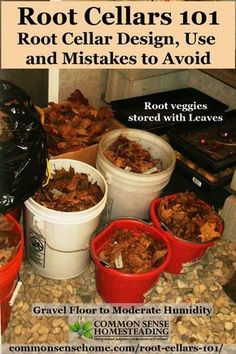 Root Cellars - Learn how to build a root cellar, what to store and how to store it. Includes printable storage guide for over 30 fruits and veggies. cellar Root Cellars Root Cellar Design, Use and Mistakes to Avoid Root Veggies, Fruits And Vegetables, Store Vegetables, Growing Veggies, Storage Room, Food Storage, Storage Ideas, Storage Solutions, Fruit Storage