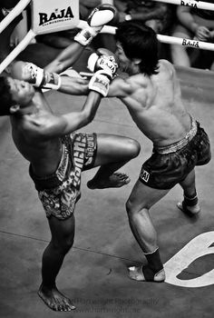 Ultimate judo jujitsu charm kickboxing Fighter Fighting