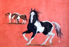 Paint horses. A drawing in pastel and crayon on paper... A commission for a surprise gift.  Gabriela B Sutter.