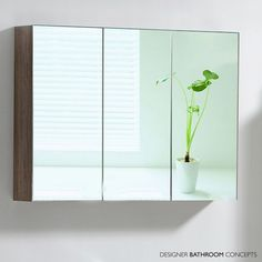 14 Best Bathroom Mirror Cabinets Images On Pinterest Mirror