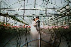 Fotografie Nunta - Örs & Beáta   Targu Mures - Sandoria - Fotografie de nunta si portret, Fotojurnalism de nunta, fotografie logodna, copii, portret de familie. Fotograf profesionist de nunta si evenimente din Targu Mures - Majos Daniel