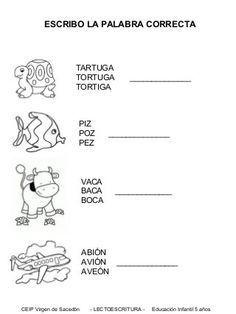 Fichas para comienzo de curso: nivel 5 años Catalan Language, Miguel Angel, Preschool Math, Home Schooling, Math Worksheets, Kids Education, Speech Therapy, Classroom, Teaching