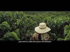 Proyectos de sostenibilidad | Juan Valdez® Café http://juanvaldezcafe.com/es/colombia