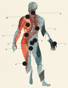 For decades, science has classified cancers by the organ or system in which they begin. That taxonomy is slowly being replaced — but it's still the indispensable way to understand the odds.